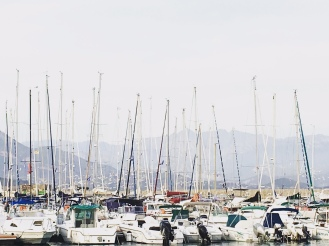 A mAst is a mUst, if you live in Corsica. Photo: Ksenia Kosheleva
